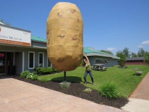 PotatoMuseum copy