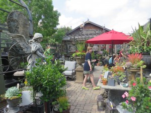 RiversdalegardenShop
