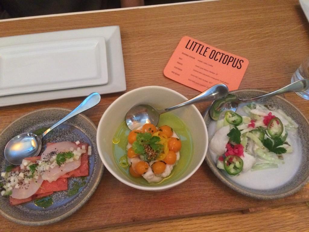 LittleOctopus-starters